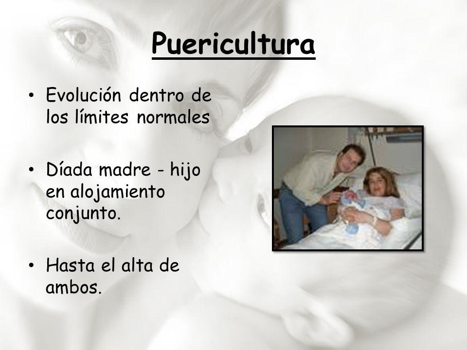 Puericultura Evolución dentro de los límites normales Díada madre - hijo en alojamiento conjunto. Hasta el alta de ambos.