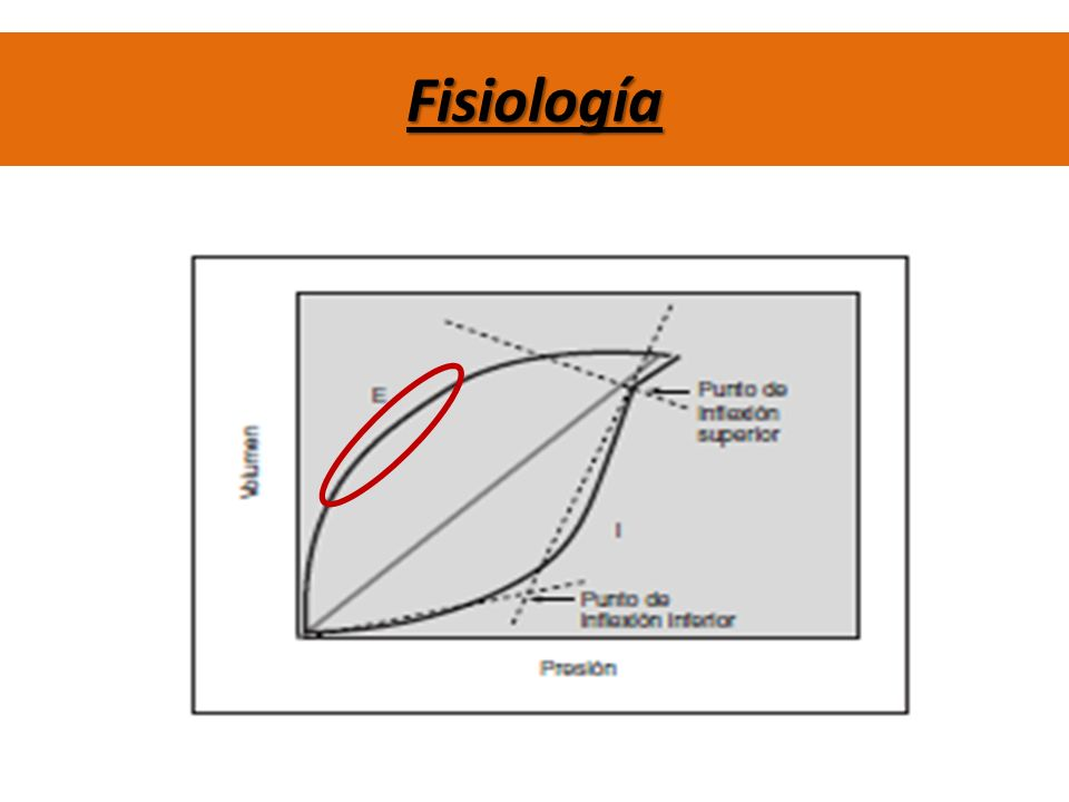 Complicaciones Hipertensión Intracraneana Crisis Hipertensiva Hipotensión grave Inestabilidad Hemodinámica Hipo/Hipertensión Bradicardia Hipoxemia Alteración PIC Broncoespasmo Estas complicaciones son relativas en su mayoría, y principalmente apuntan a ciertas técnicas kinésicas y en ciertas condiciones