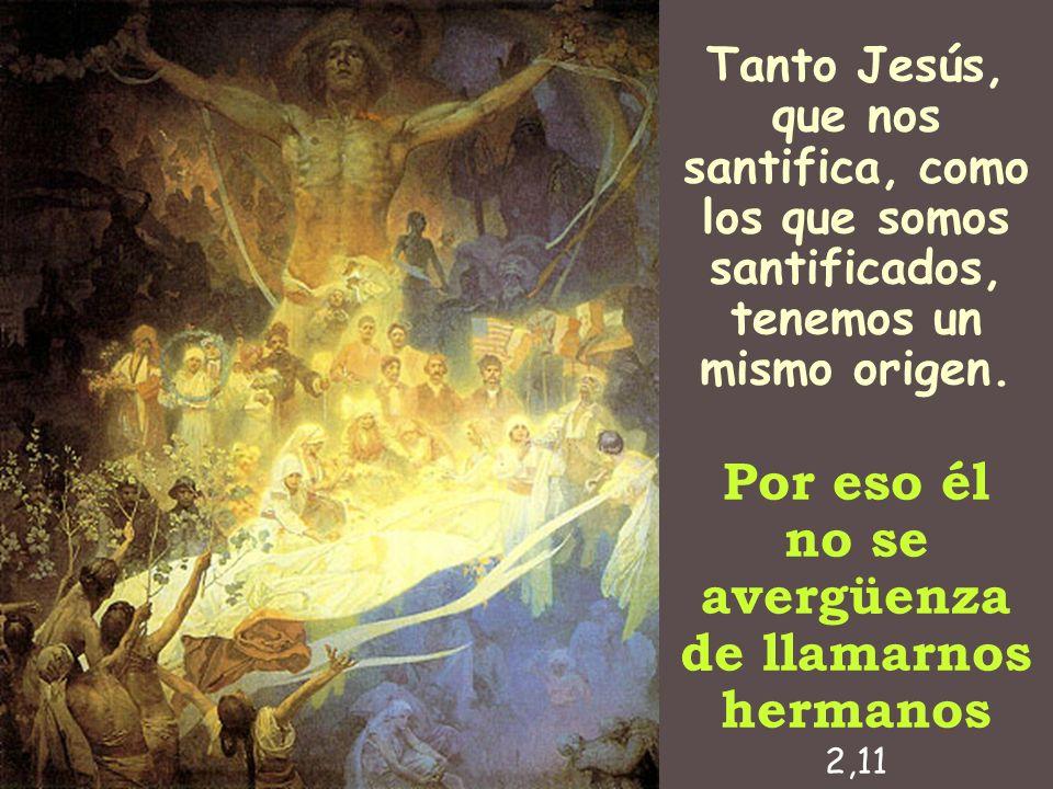 Tanto Jesús, que nos santifica, como los que somos santificados, tenemos un mismo origen. Por eso él no se avergüenza de llamarnos hermanos 2,11