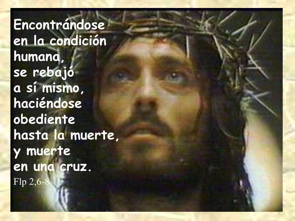 Encontrándose en la condición humana, se rebajó a sí mismo, haciéndose obediente hasta la muerte, y muerte en una cruz. Flp 2,6-8
