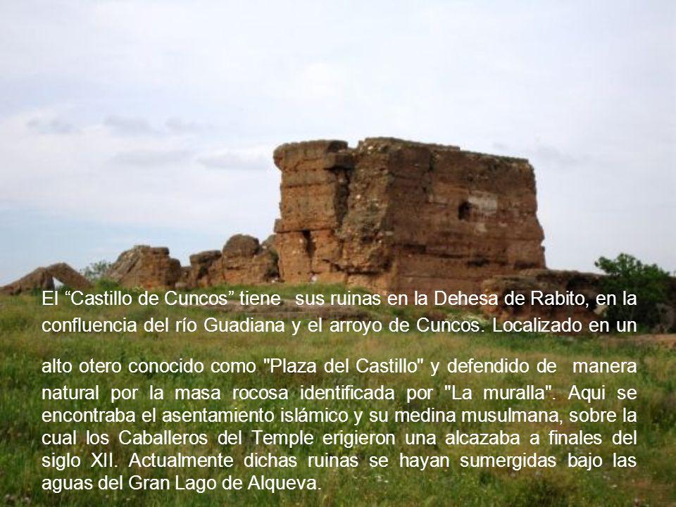 El Castillo de Cuncos tiene sus ruinas en la Dehesa de Rabito, en la confluencia del río Guadiana y el arroyo de Cuncos. Localizado en un alto otero c