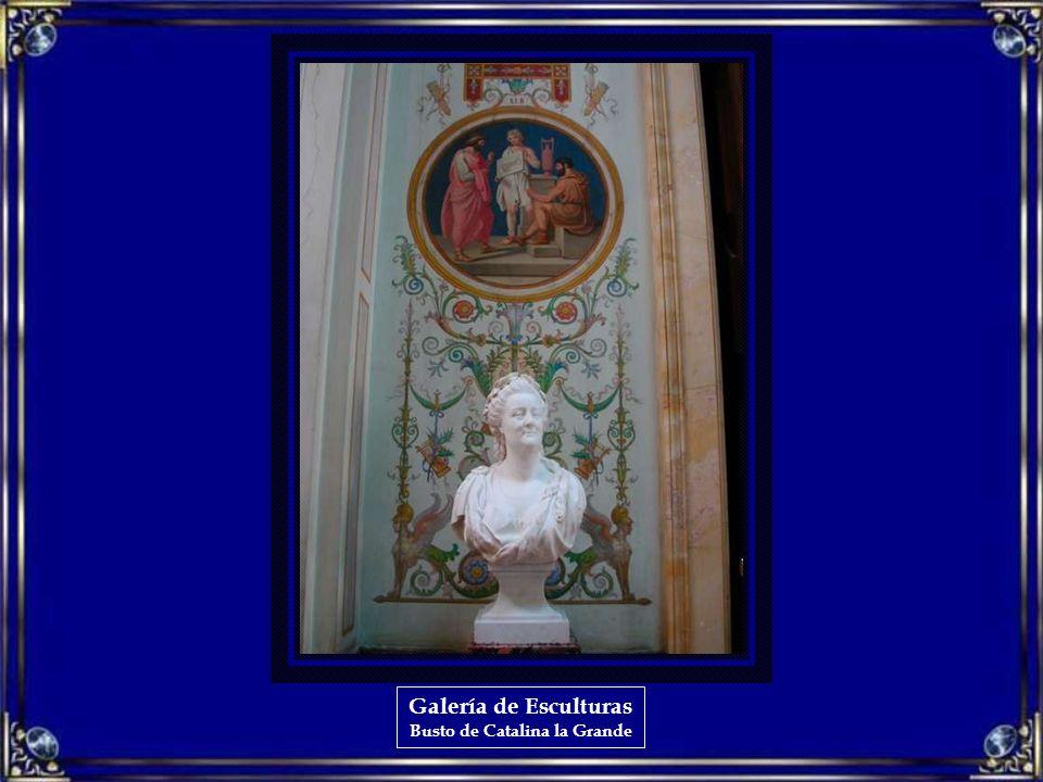 Galería de Esculturas Busto de Pedro el Grande