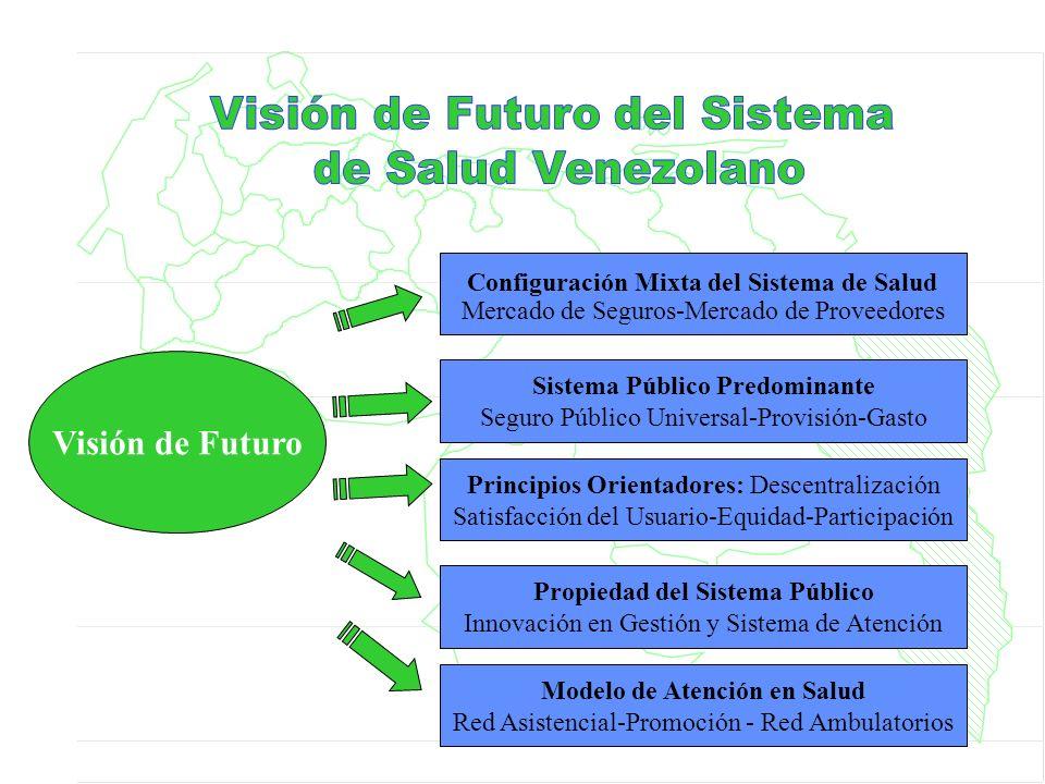 Visión de Futuro Mercado de Seguros-Mercado de Proveedores Configuración Mixta del Sistema de Salud Sistema Público Predominante Seguro Público Univer