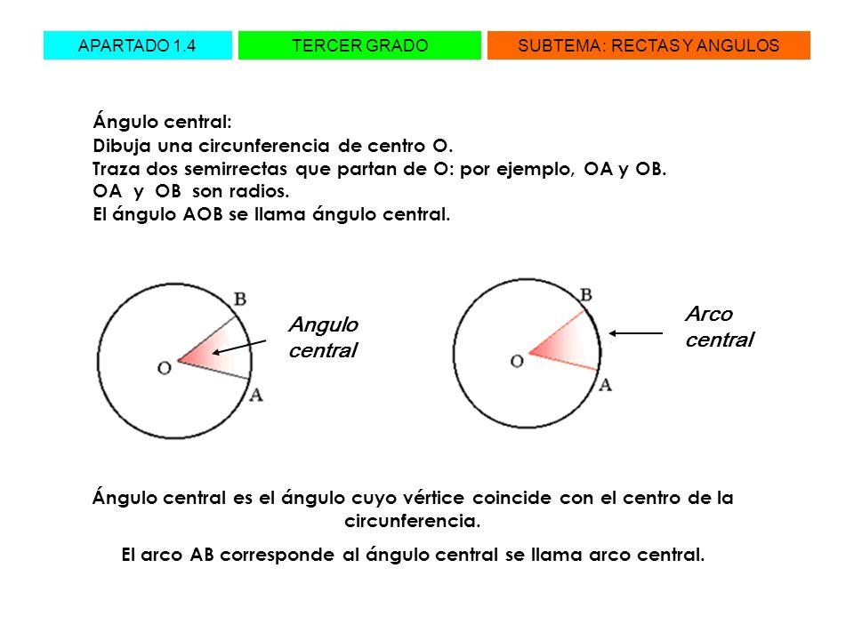 APARTADO 1.4TERCER GRADOSUBTEMA : RECTAS Y ANGULOS Ángulo central: Dibuja una circunferencia de centro O. Traza dos semirrectas que partan de O: por e