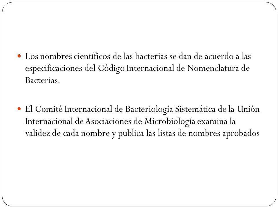 Los nombres científicos de las bacterias se dan de acuerdo a las especificaciones del Código Internacional de Nomenclatura de Bacterias. El Comité Int