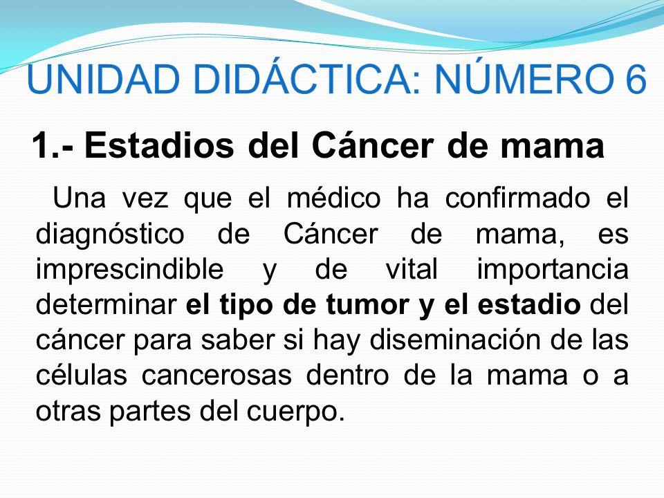 1.- Estadios del Cáncer de mama Una vez que el médico ha confirmado el diagnóstico de Cáncer de mama, es imprescindible y de vital importancia determi