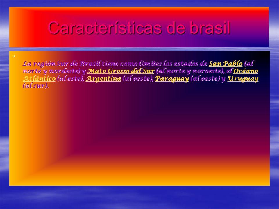 Características de brasil La región Sur de Brasil tiene como límites los estados de San Pablo (al norte y nordeste) y Mato Grosso del Sur (al norte y