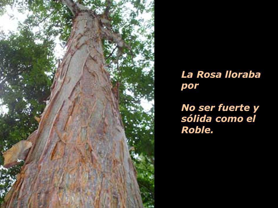 Y la Vid se moría porque No podía florecer como la Rosa.