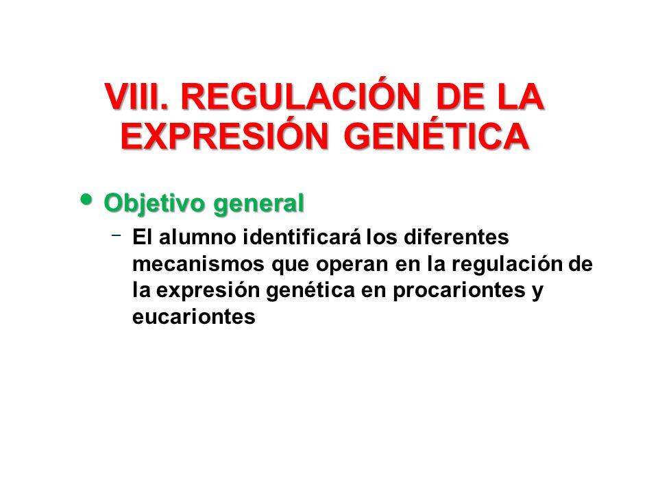 VIII. REGULACIÓN DE LA EXPRESIÓN GENÉTICA Objetivo general Objetivo general – El alumno identificará los diferentes mecanismos que operan en la regula