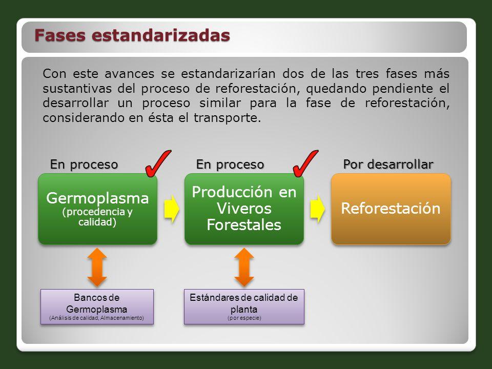 Con este avances se estandarizarían dos de las tres fases más sustantivas del proceso de reforestación, quedando pendiente el desarrollar un proceso s
