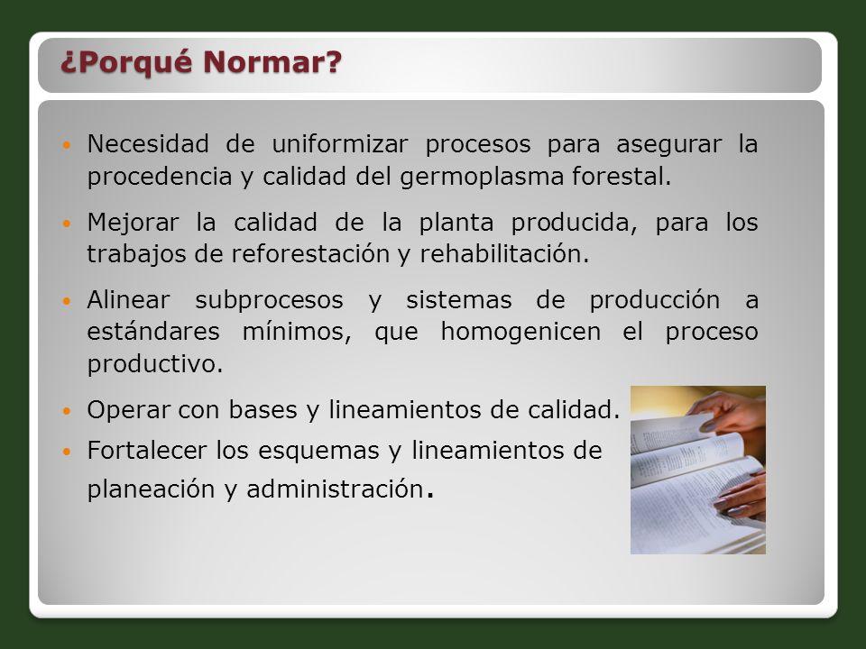 Necesidad de uniformizar procesos para asegurar la procedencia y calidad del germoplasma forestal. Mejorar la calidad de la planta producida, para los