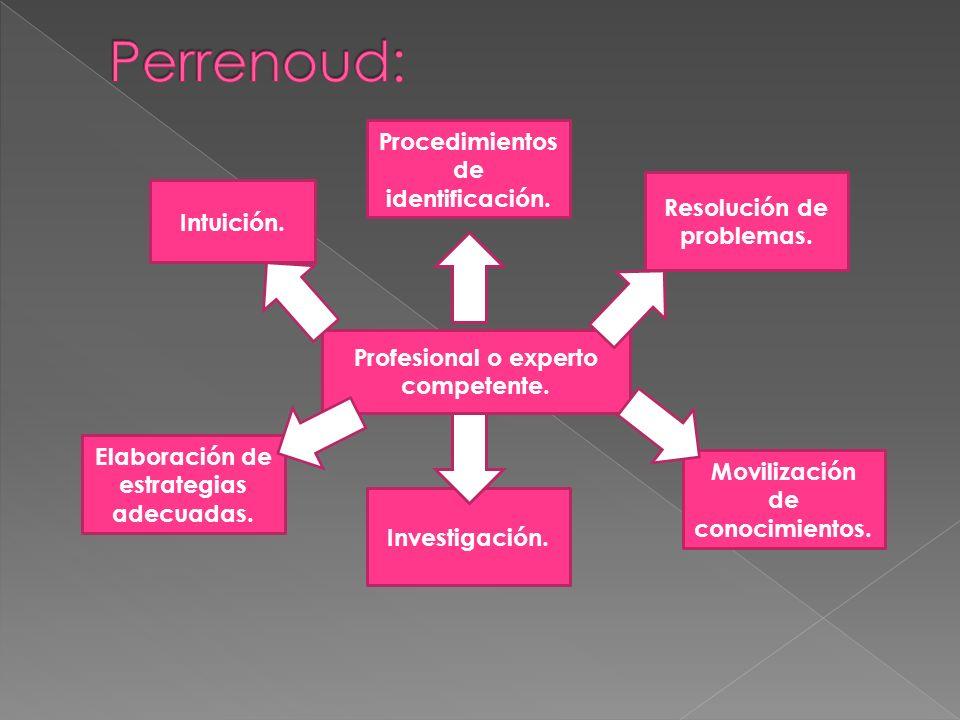 Profesional o experto competente. Intuición. Procedimientos de identificación. Resolución de problemas. Movilización de conocimientos. Investigación.