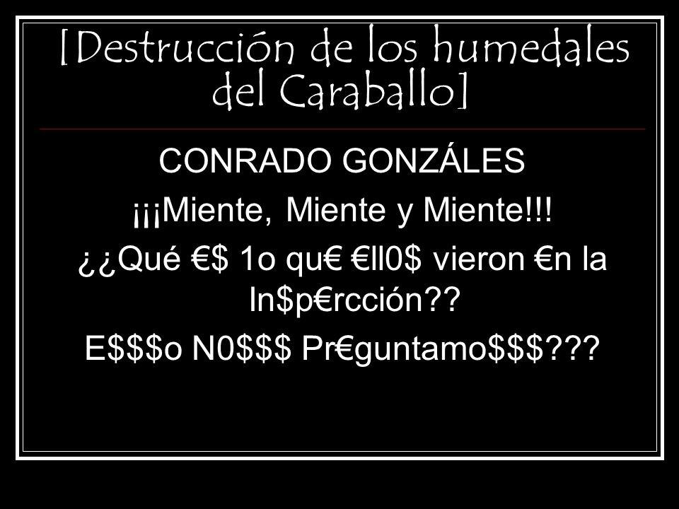 [Destrucción de los humedales del Caraballo] No sólo HAY DESMONTE, sino que los DESMONTES se estaban realizando en el momento de la inspección!!!