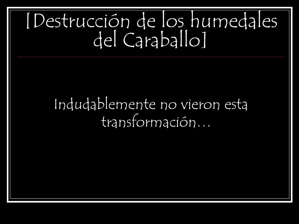 [Destrucción de los humedales del Caraballo] El día 30 de abril del 2010, Conrado González dijo que de la inspección hecha por su repartición al lugar