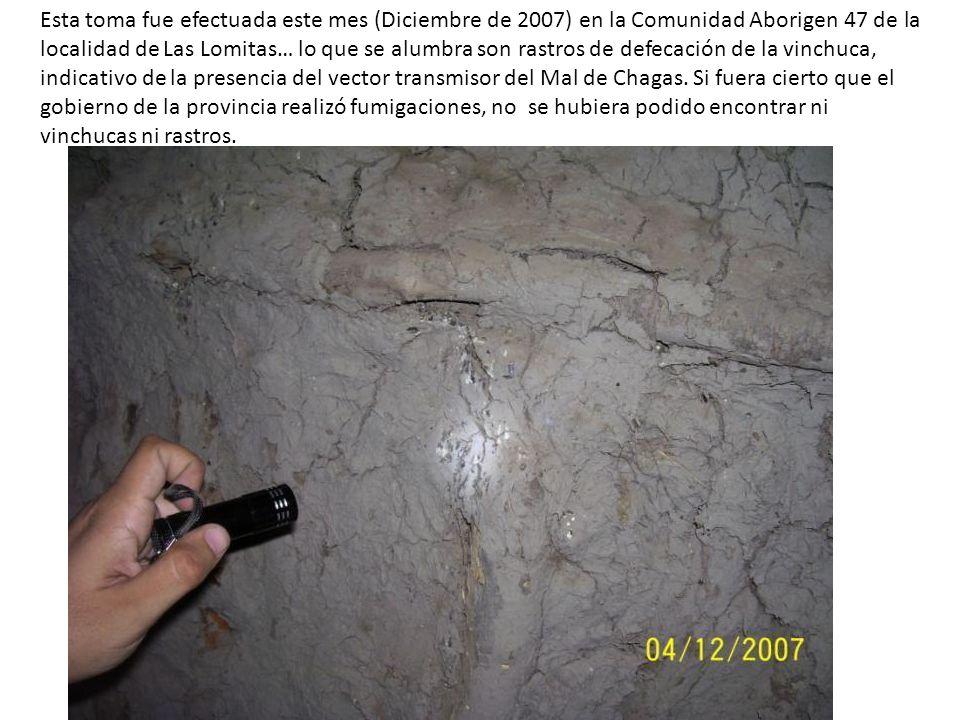 Esta toma fue efectuada este mes (Diciembre de 2007) en la Comunidad Aborigen 47 de la localidad de Las Lomitas… lo que se alumbra son rastros de defecación de la vinchuca, indicativo de la presencia del vector transmisor del Mal de Chagas.
