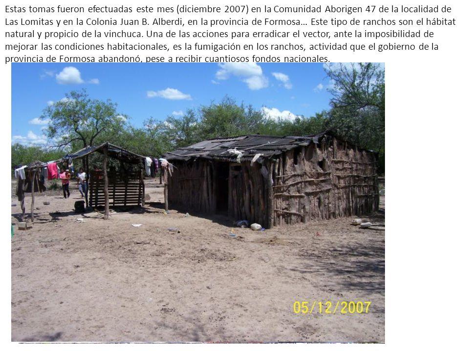 Estas tomas fueron efectuadas este mes (diciembre 2007) en la Comunidad Aborigen 47 de la localidad de Las Lomitas y en la Colonia Juan B.