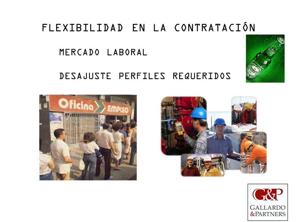 FLEXIBILIDAD EN LA CONTRATACIÓN MERCADO LABORAL DESAJUSTE PERFILES REQUERIDOS