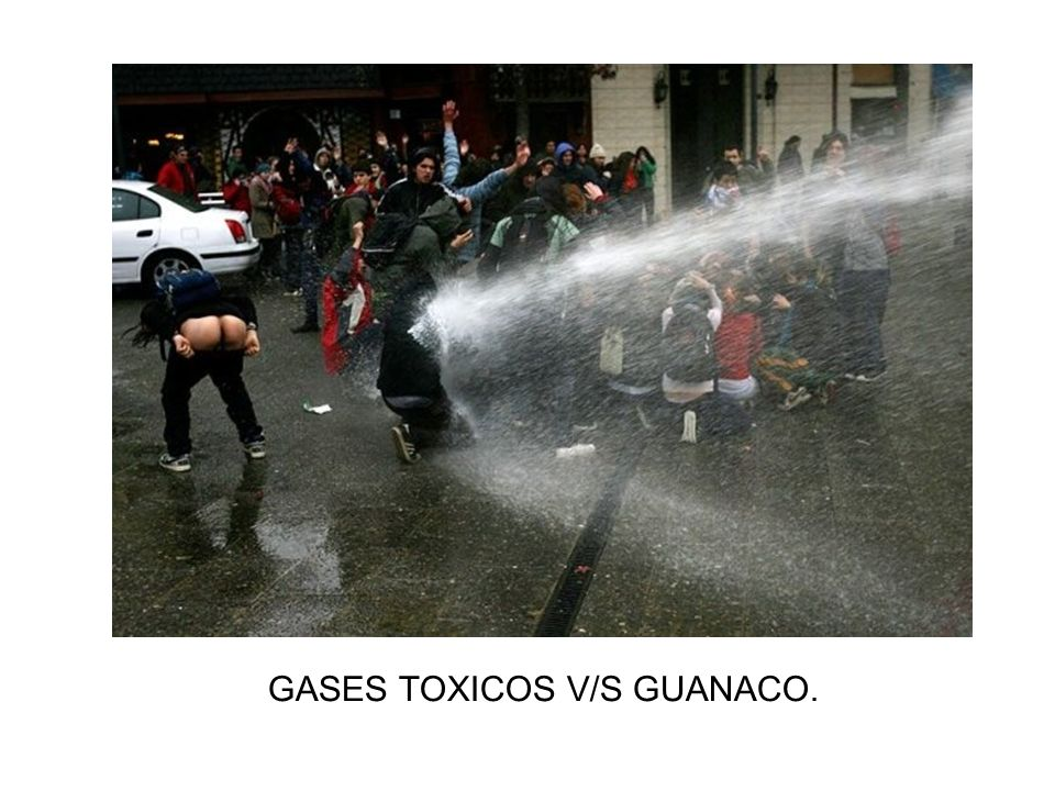 GASES TOXICOS V/S GUANACO.