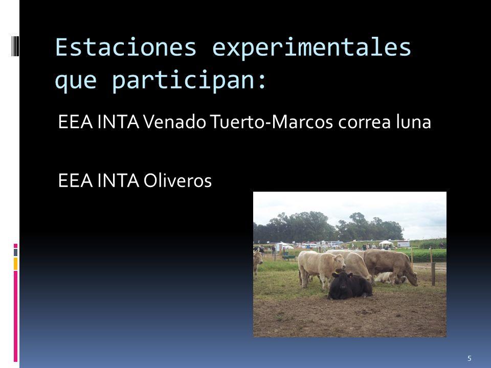 Incrementar la eficiencia (eficacia económica y biológica) de la cría vacuna por la intensificación del manejo, aumentando la carga animal, mayores procreos, elevados índices de destete/vaca y por ha.