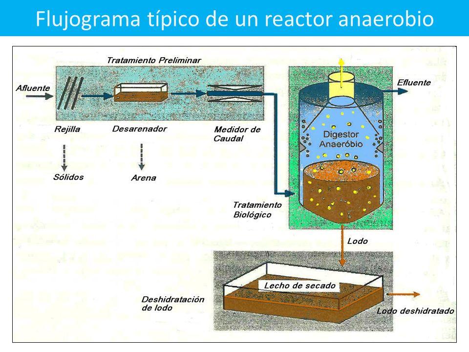 Flujograma típico de un reactor anaerobio