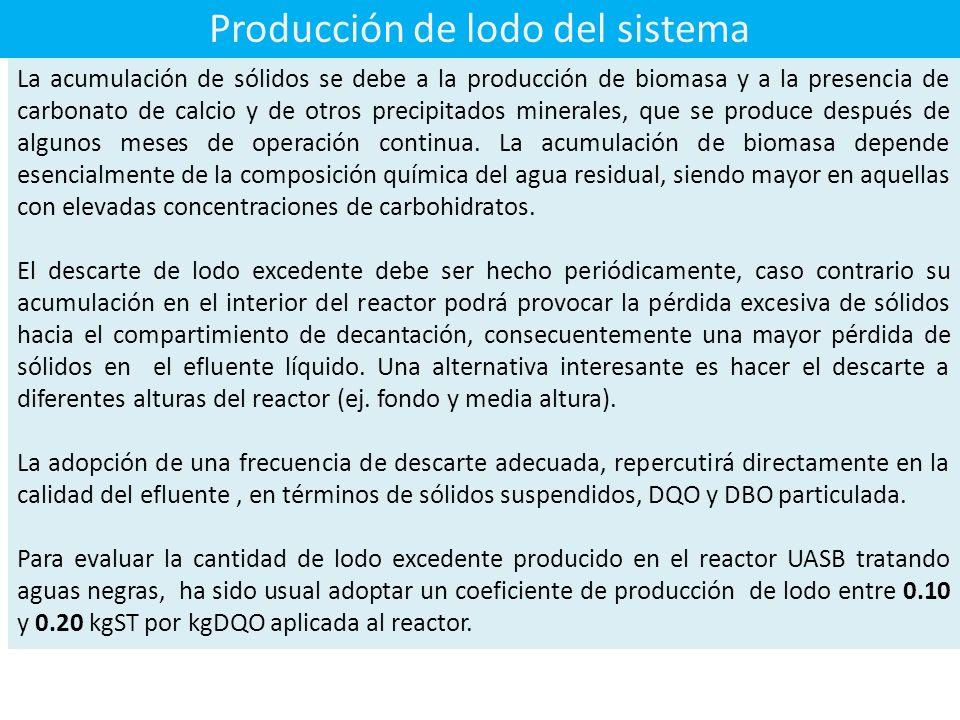 Producción de lodo del sistema La acumulación de sólidos se debe a la producción de biomasa y a la presencia de carbonato de calcio y de otros precipitados minerales, que se produce después de algunos meses de operación continua.
