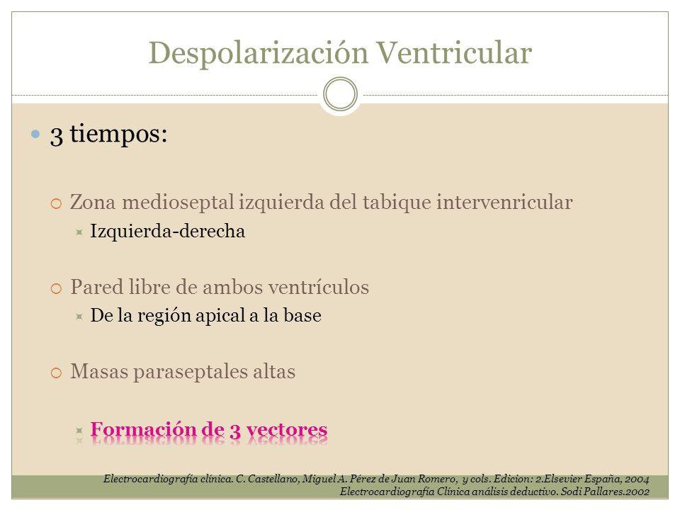 Despolarización Ventricular Electrocardiografía clínica. C. Castellano, Miguel A. Pérez de Juan Romero, y cols. Edicion: 2.Elsevier España, 2004 Elect