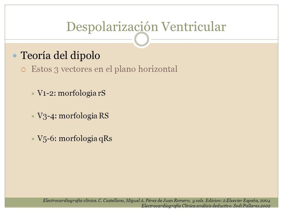 Teoría del dipolo Estos 3 vectores en el plano horizontal V1-2: morfologia rS V3-4: morfologia RS V5-6: morfologia qRs Despolarización Ventricular Ele