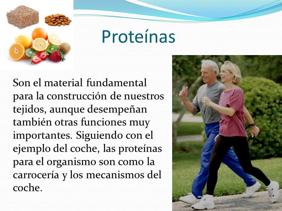 Proteínas Son el material fundamental para la construcción de nuestros tejidos, aunque desempeñan también otras funciones muy importantes. Siguiendo c