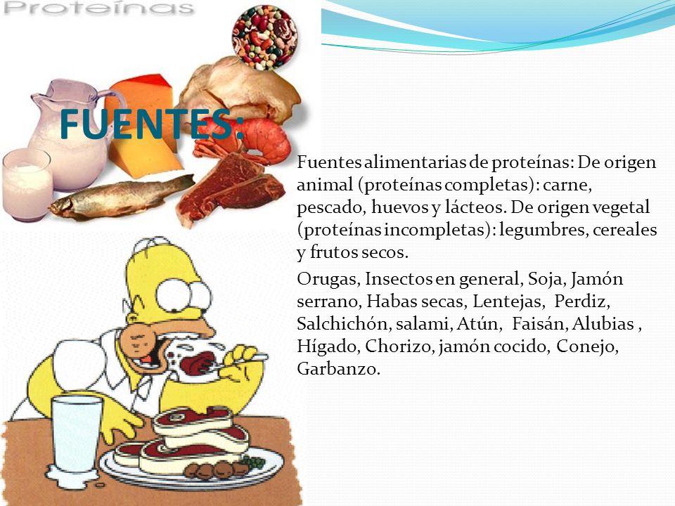 FUENTES: Fuentes alimentarias de proteínas: De origen animal (proteínas completas): carne, pescado, huevos y lácteos. De origen vegetal (proteínas inc
