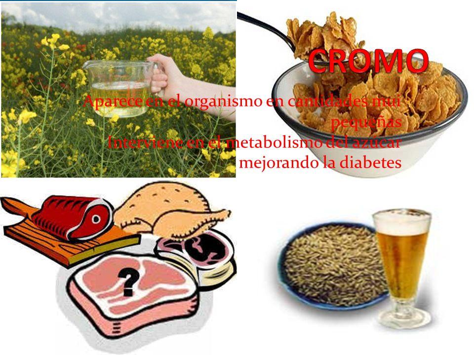 Aparece en el organismo en cantidades mui pequeñas Interviene en el metabolismo del azúcar mejorando la diabetes