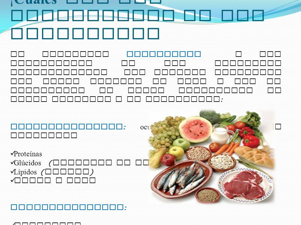 ¡ Cu á les son los Componentes de los Alimentos? Se denominan NUTRIENTES a los componentes de los alimentos aprovechables por nuestro organismo que ha