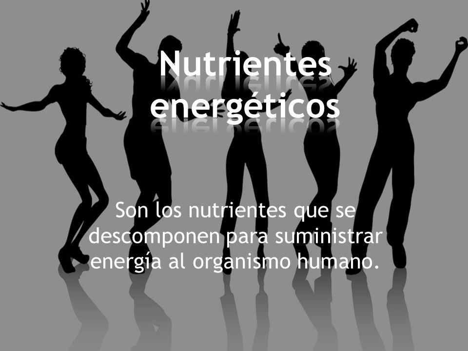 Son los nutrientes que se descomponen para suministrar energía al organismo humano.