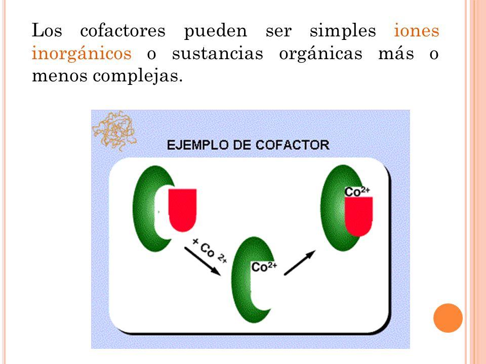 COFACTORES Existen enzimas cuya función catalítica se debe exclusivamente a su naturaleza proteica, pero hay otras en que sus propiedades catalíticas, aunque relacionadas con su naturaleza proteica, dependen para su actividad óptima de la presencia de una estructura no proteica y termoestable llamada cofactor.