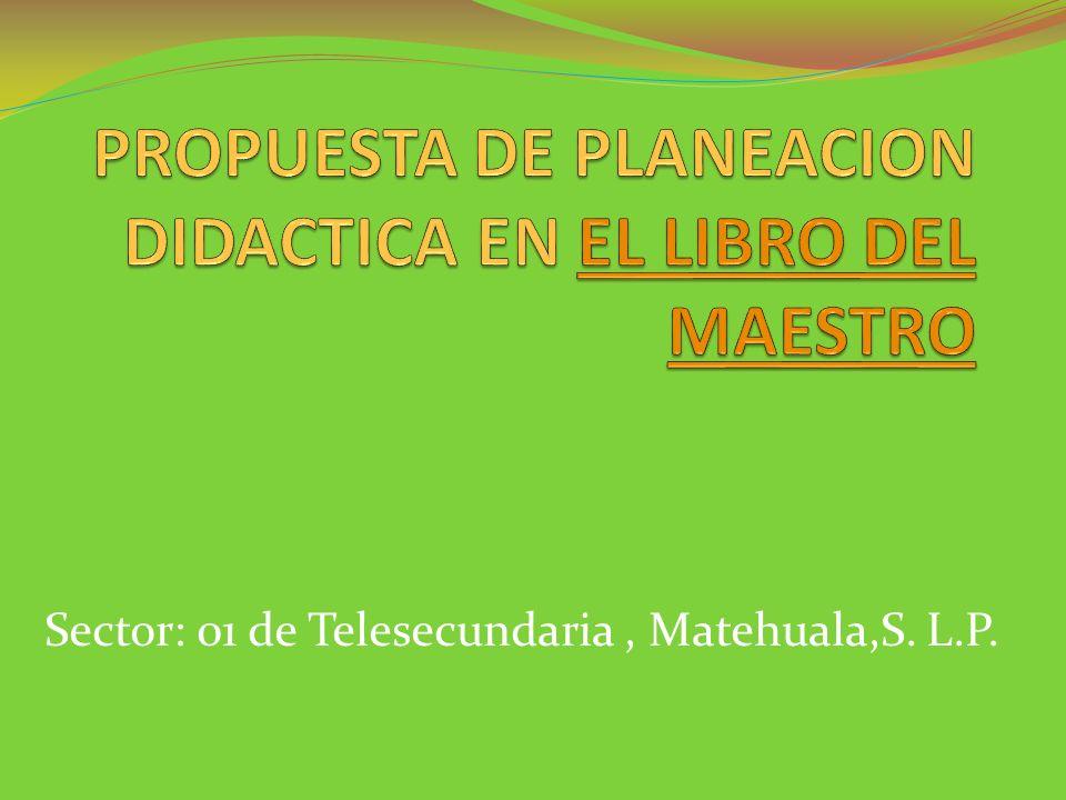 Sector: 01 de Telesecundaria, Matehuala,S. L.P.