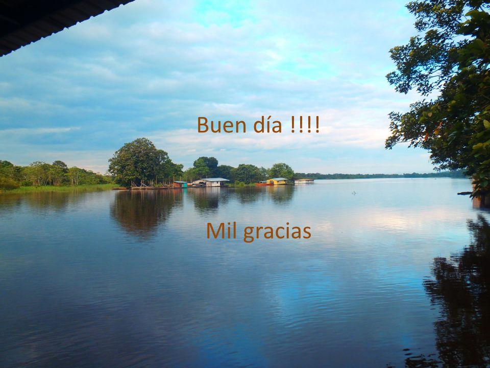 Buen día !!!! Mil gracias