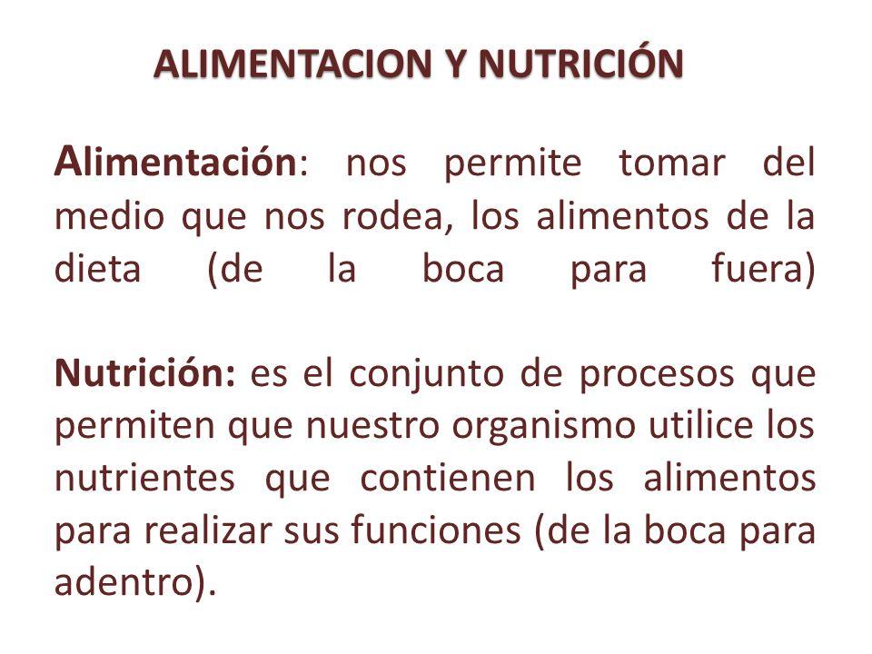 A limentación: nos permite tomar del medio que nos rodea, los alimentos de la dieta (de la boca para fuera) Nutrición: es el conjunto de procesos que