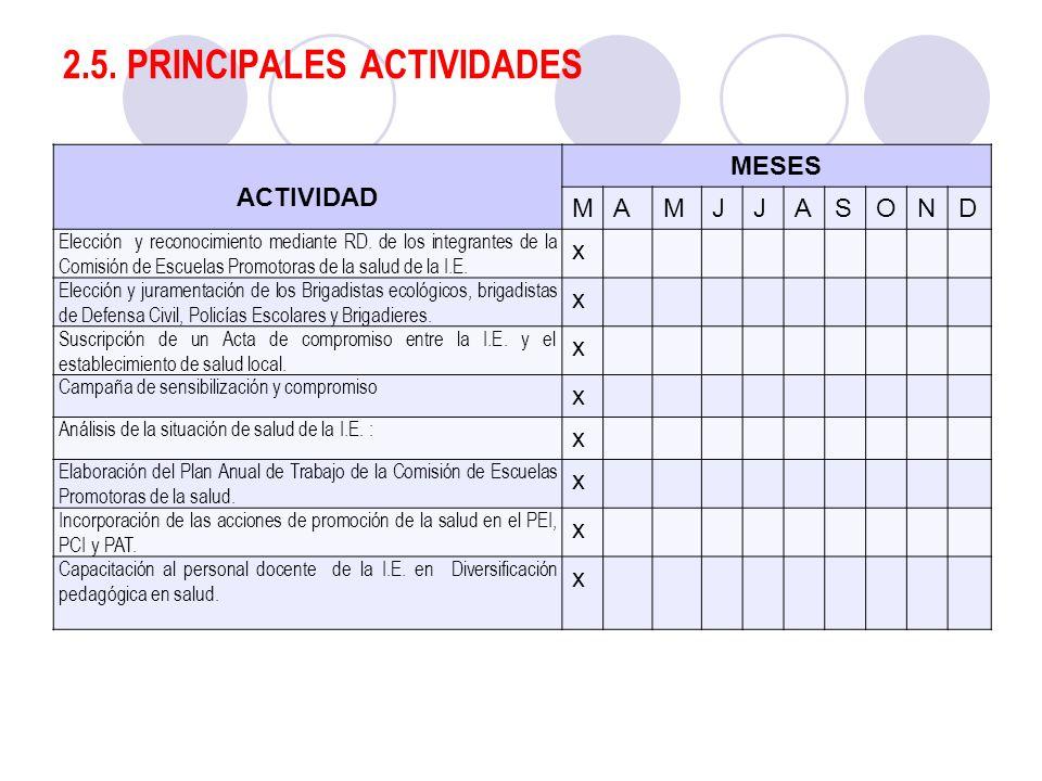 2.5. PRINCIPALES ACTIVIDADES ACTIVIDAD MESES MAMJJASOND Elección y reconocimiento mediante RD. de los integrantes de la Comisión de Escuelas Promotora