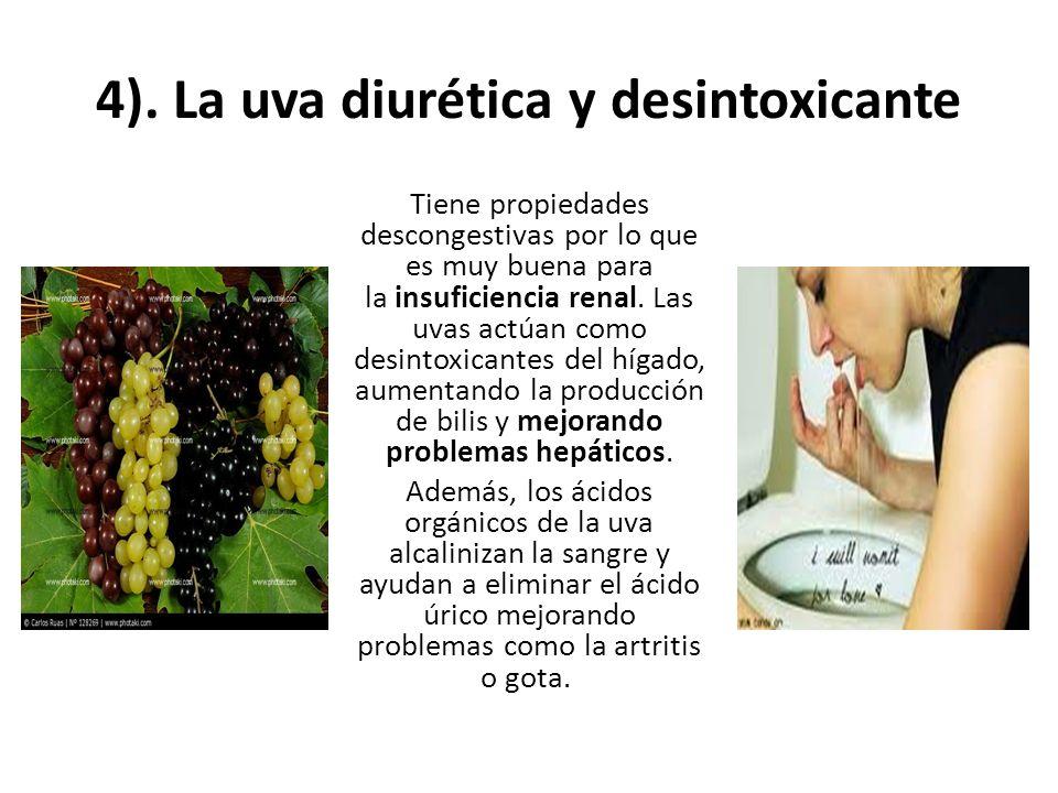 4). La uva diurética y desintoxicante Tiene propiedades descongestivas por lo que es muy buena para la insuficiencia renal. Las uvas actúan como desin