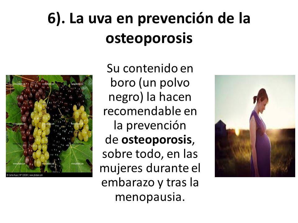 6). La uva en prevención de la osteoporosis Su contenido en boro (un polvo negro) la hacen recomendable en la prevención de osteoporosis, sobre todo,