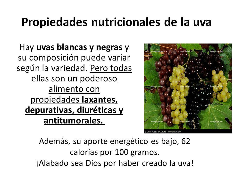 Propiedades nutricionales de la uva Hay uvas blancas y negras y su composición puede variar según la variedad.