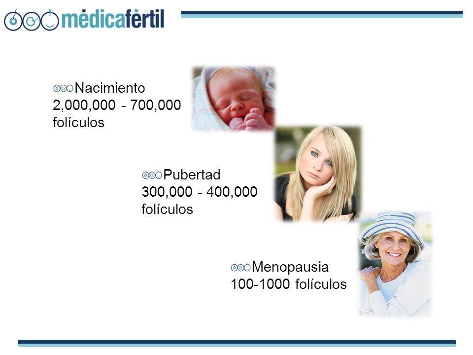Nacimiento 2,000,000 - 700,000 folículos Pubertad 300,000 - 400,000 folículos Menopausia 100-1000 folículos