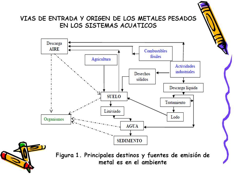 VIAS DE ENTRADA Y ORIGEN DE LOS METALES PESADOS EN LOS SISTEMAS ACUATICOS Figura 2.