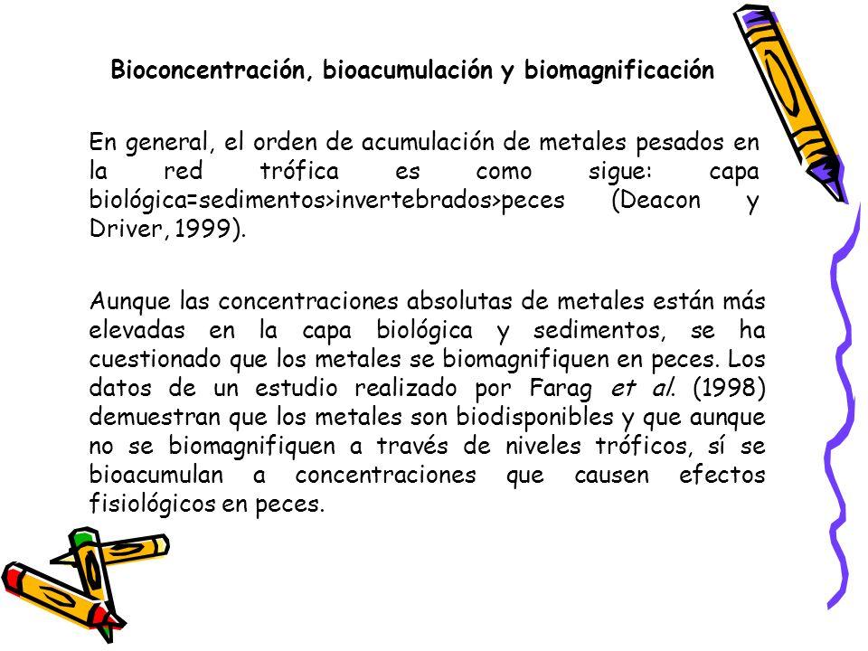 Bioconcentración, bioacumulación y biomagnificación La bioacumulación es un mecanismo celular que involucra un sistema de transporte de membrana que internaliza al metal pesado presente en el entorno celular con gasto de energía.