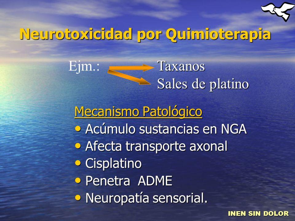 Neurotoxicidad por Quimioterapia Mecanismo Patológico Acúmulo sustancias en NGA Acúmulo sustancias en NGA Afecta transporte axonal Afecta transporte a