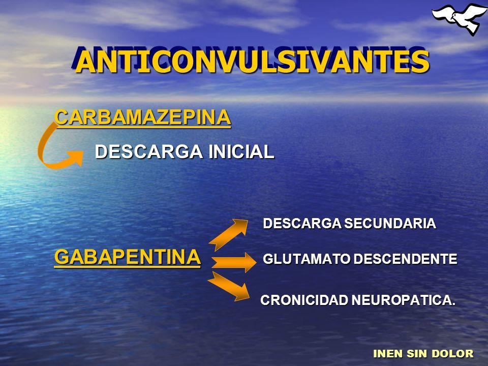 ANTICONVULSIVANTESANTICONVULSIVANTES CARBAMAZEPINA DESCARGA INICIAL DESCARGA INICIAL DESCARGA SECUNDARIA DESCARGA SECUNDARIA GABAPENTINA GLUTAMATO DES