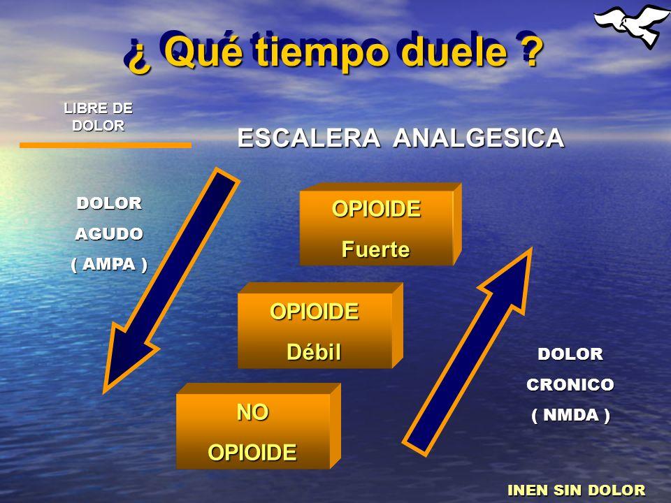 ¿ Qué tiempo duele ? ESCALERA ANALGESICA OPIOIDEFuerte OPIOIDEDébil NOOPIOIDE DOLORCRONICO ( NMDA ) DOLORAGUDO ( AMPA ) LIBRE DE DOLOR INEN SIN DOLOR
