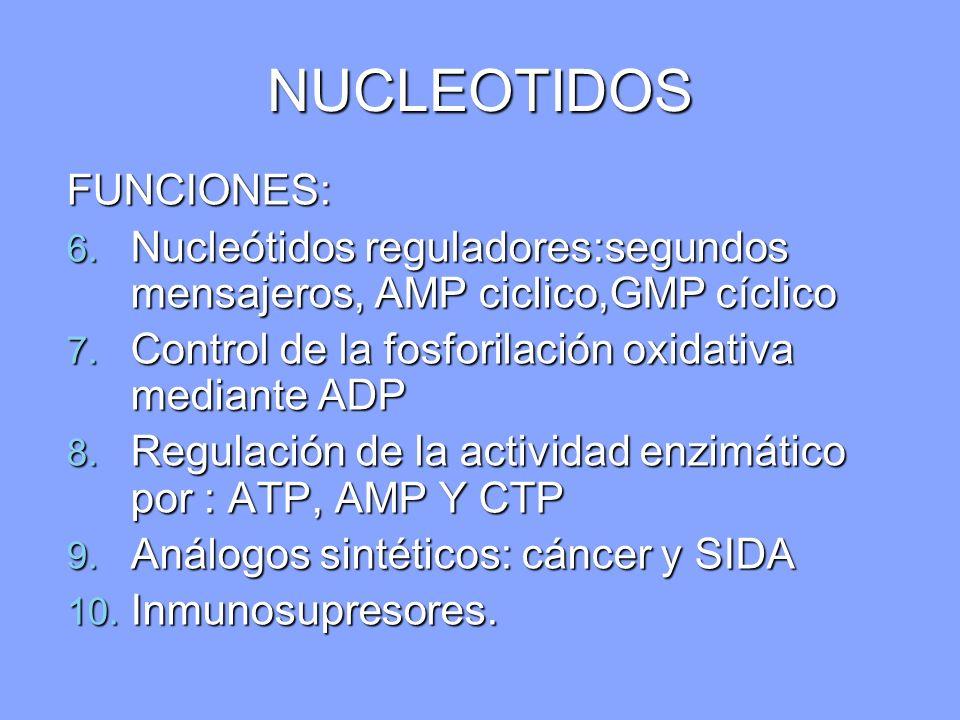 NUCLEOTIDOS FUNCIONES: 6. Nucleótidos reguladores:segundos mensajeros, AMP ciclico,GMP cíclico 7. Control de la fosforilación oxidativa mediante ADP 8