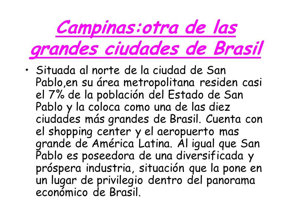 Campinas:otra de las grandes ciudades de Brasil Situada al norte de la ciudad de San Pablo,en su área metropolitana residen casi el 7% de la población