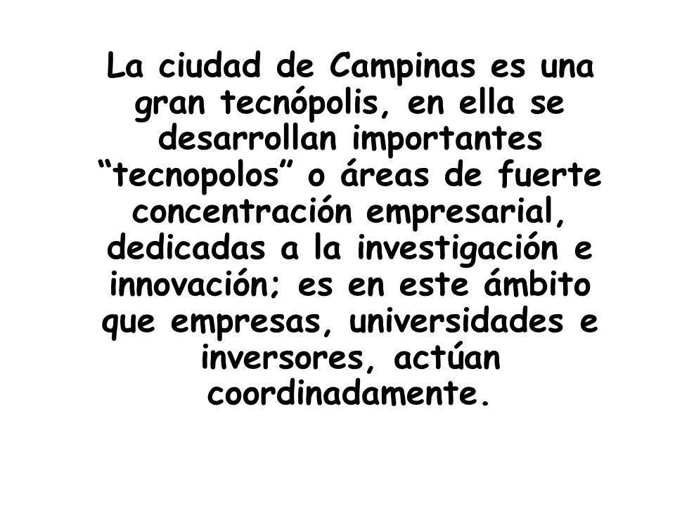 La ciudad de Campinas es una gran tecnópolis, en ella se desarrollan importantes tecnopolos o áreas de fuerte concentración empresarial, dedicadas a l