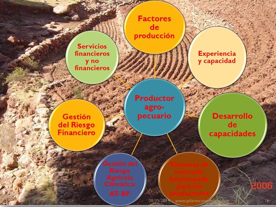 Productor agro- pecuario Factores de producción Experiencia y capacidad Desarrollo de capacidades Sistemas de mercado funcionando para los productores